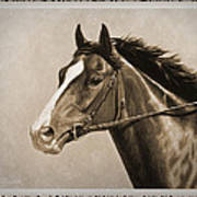 Race Horse Old Photo Fx Art Print by Crista Forest
