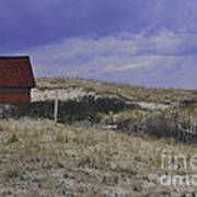 Race Point Light Shed Art Print