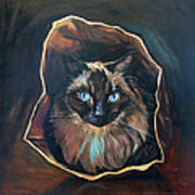 Cat Painting. Ragdoll Cat The Cat's In The Bag Art Print