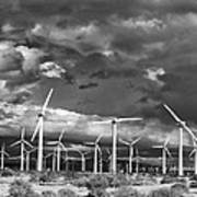 Rage Of The Wind Palm Springs Art Print