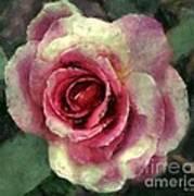 Ragged Satin Rose Art Print