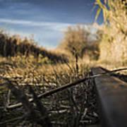 Rail Art Print