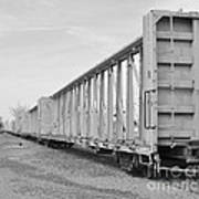 Rail Cars Art Print