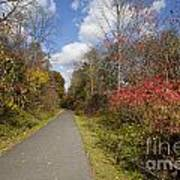 Rail Trail Art Print