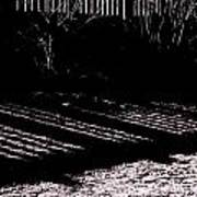 Railing Shadow Art Print