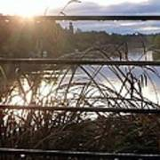 Rain Drops On Railing River View 1 Art Print