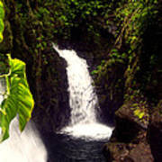 Rain Forest Grotto With 2 Waterfalls Art Print