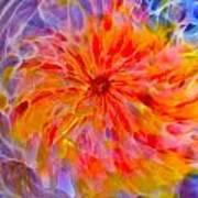 Rainbow Coronal Art Print