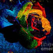 Rainbow Ecstasy Art Print