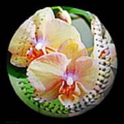 Rainbow Orchids Baseball Square Art Print