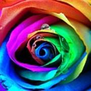 Rainbow Rose Art Print by Juergen Weiss