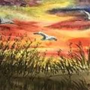 On Wind Of A Rainbow  Art Print
