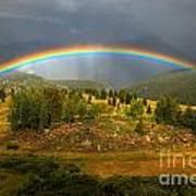Rainbow Through The Forest Art Print