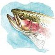 Rainbow Trout Study Art Print by JQ Licensing