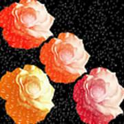 Raindrops On Roses - My Favorite Things Art Print
