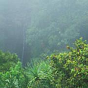 Rainforest And Lower Puohokamoa Falls Maui Hawaii Art Print