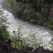 Rainforest River Art Print