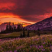Rainier Fire Mountain Panorama Art Print