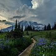 Rainier Meadows Thunder Skies Art Print