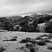Rainy Day In The Lake District Near Loughrigg Cumbria England Uk Art Print
