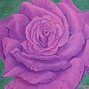 Rainy Day Rose Art Print