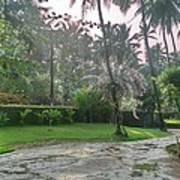 rainy Kerala  Art Print