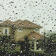 Rainy Tropics Art Print