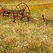 Ranch And Wildflowers And Old Implement 2am-110546 Art Print