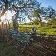 Ranch Fence Art Print