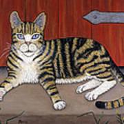 Rascal The Cat Art Print