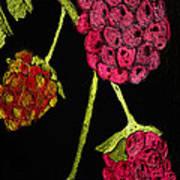 Raspberry Fabric Art Print