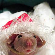 Rat Elf Art Print