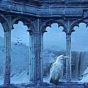 Raven Of Winter Art Print