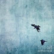 Ravens Flight Art Print by Priska Wettstein
