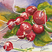 Ravishing Radishes Art Print