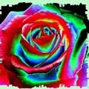 Razzle Dazzle Rose Art Print