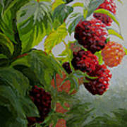 Razzleberries Art Print