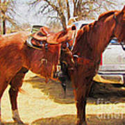 Ready For Some Ropin Art Print