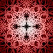 Red Art Print by Adam Romanowicz