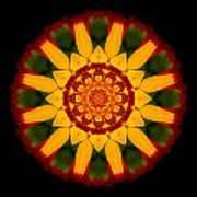 Red And Yellow Marigold V Flower Mandala Art Print