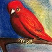Red Bird Art Print by Anais DelaVega