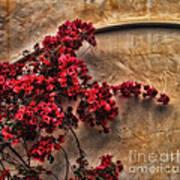 Red Bougainvilla Vine On Stucco Wall Art Print