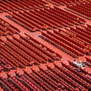 Red Chairs Art Print by Dobromir Dobrinov