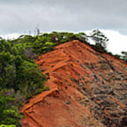 Red Cliff At Waimea Art Print