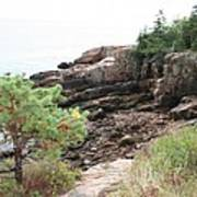 Red Cliffs Of Acadia  Art Print
