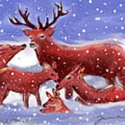 Red Deer Family Art Print
