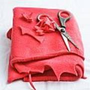 Red Fleece Art Print