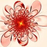 Single Red Flower Art Print
