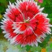 Red Flower Macro Art Print