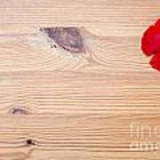 Red Flower On Wood  Art Print